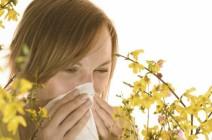 Причины головной боли при аллергическом рините