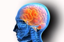 Головные боли при инфекционных поражениях головного мозга