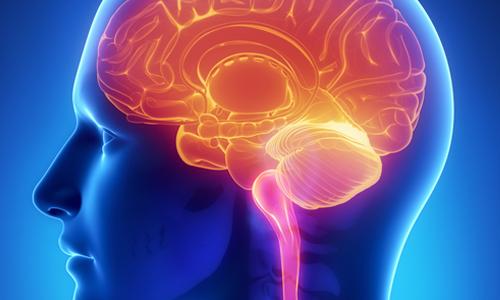 Что такое рак головного мозга?