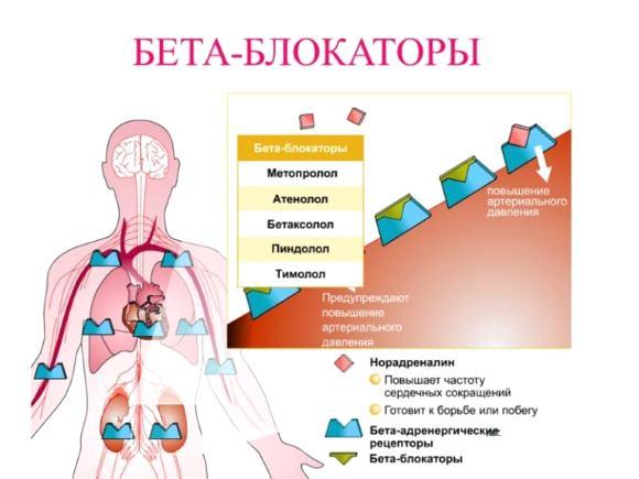 Лекарственные средства, применяемые для лечения гипертонии