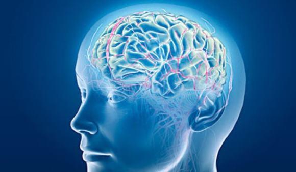 При инсульте любого типа клетки мозга не получают кровь