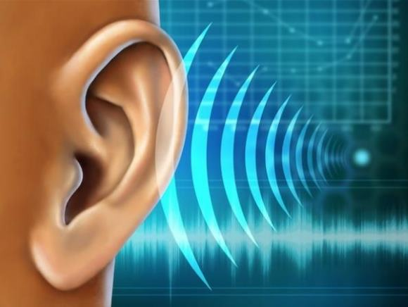 Слуховая агнозия возникает в результате поражения слухового анализатора
