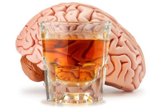 В настоящее время активно изучается воздействие алкоголя на организм человека