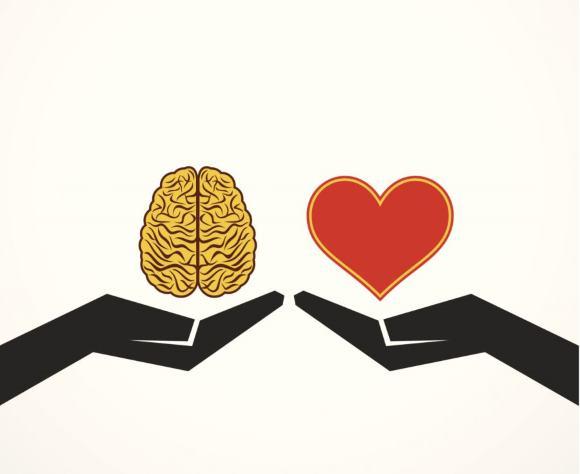 Многие патологии сердца и сосудов могут приводить к развитию ОНМК