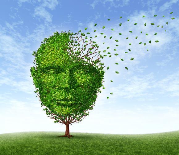 Одним из серьезных осложнений перенесенного инсульта является деменция
