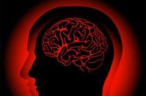 Менингит: этиология, симптоматический комплекс, типы диагностических методов исследования
