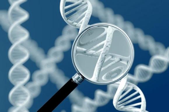 Некоторые особенности генного строения предрасполагают к развитию различных новообразований
