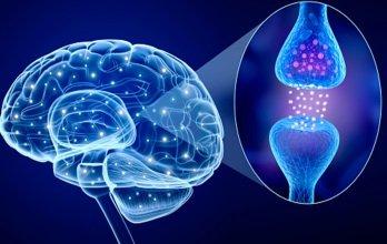 Возможности профилактики болезни Паркинсона