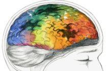 Болезнь Альцгеймера: понятие, механизмы развития, диагностические и лечебные мероприятия