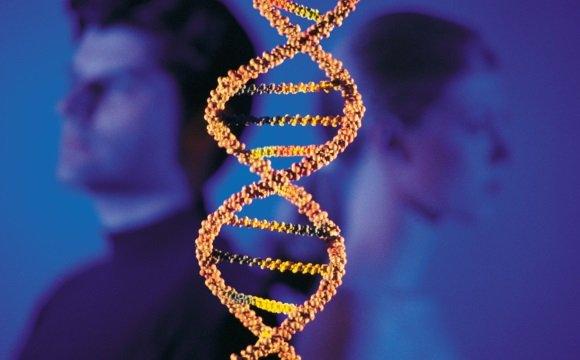 В возникновении болезни Альцгеймера генетика играет важную роль