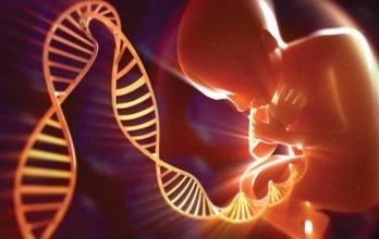 Передается ли рассеянный склероз по наследству?