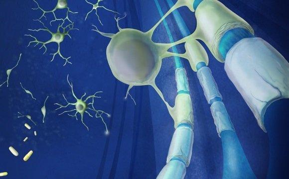 Адекватное лечение ведет к уменьшению числа обострений РС